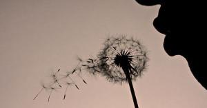 Soplan vientos antiguos